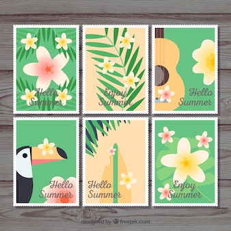 Colección de tarjetas con elementos tropicales