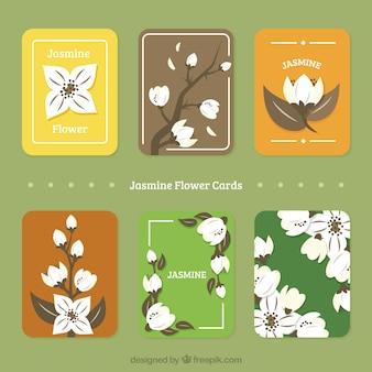 Colección de tarjetas de jazmín