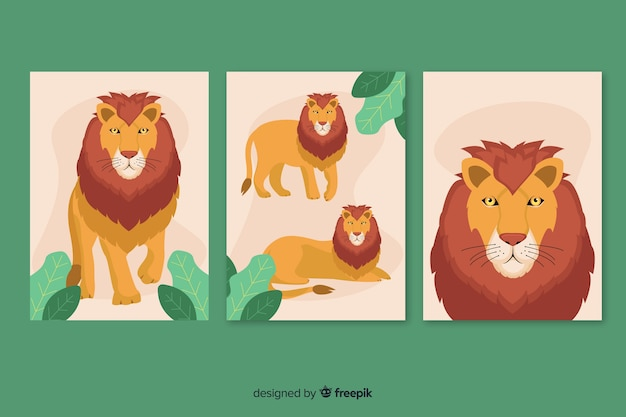 Colección tarjetas león diseño plano