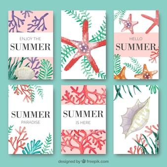 Colección de tarjetas de verano con algas y elementos marinos de acuarela