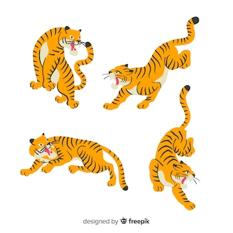 Colección de tigres dibujados a mano