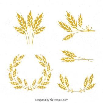 Colección de trigo hecho a mano