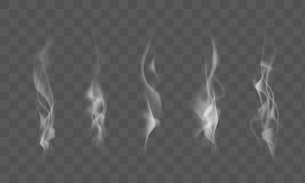 Colección de vapor de humo blanco realista, ondas de café, té, cigarrillos, comida caliente aislada sobre fondo transparente. ilustración vectorial