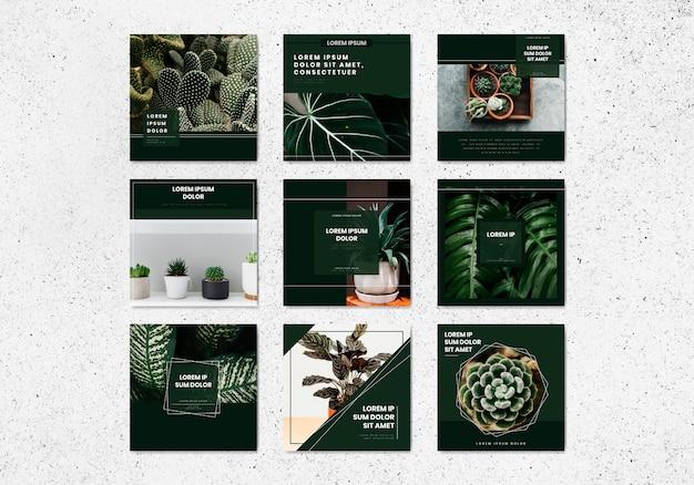 Colección de vectores de plantilla de banner de árbol