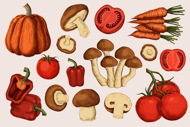 Colección de vegetales orgánicos frescos