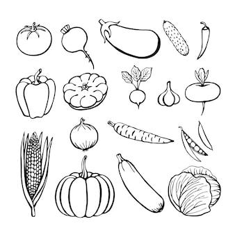 Colección de verduras dibujadas a mano, elementos aislados en el blanco. ilustración vectorial.