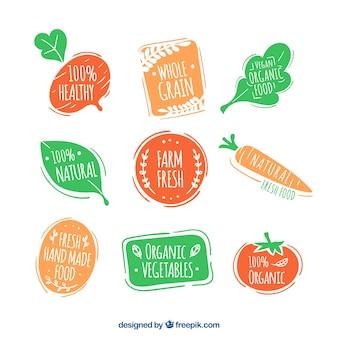 Coleccón de pegatinas de comida ecológica dibujadas a mano