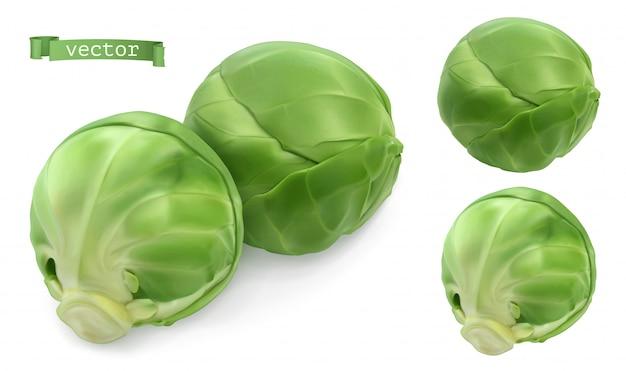 Coles de bruselas, repollo. vegetales de hoja objetos realistas 3d. ilustración de comida