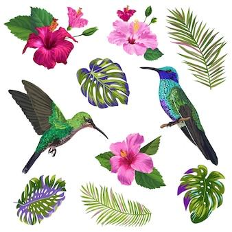 Colibrí, flores de hibiskus y hojas de palmera tropical