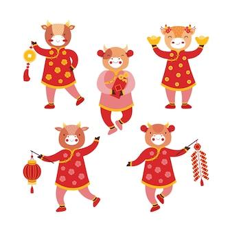 Coloque a las chicas de toro en ropas tradicionales rojas con símbolos de año nuevo. buey de año nuevo chino. monedas de oro