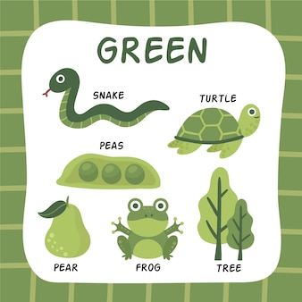 Color verde y vocabulario en inglés.