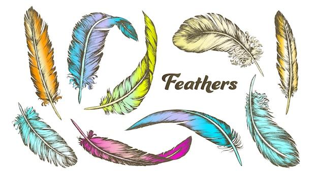 Colorea diferentes plumas