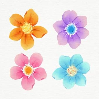 Coloridas colecciones de flores de primavera