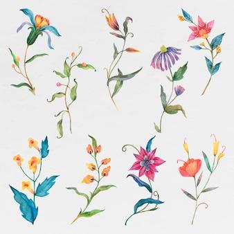 Coloridas flores de acuarela psd set