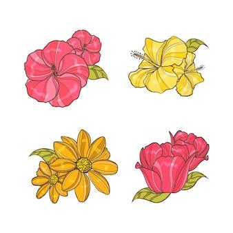 Coloridas flores dibujadas a mano