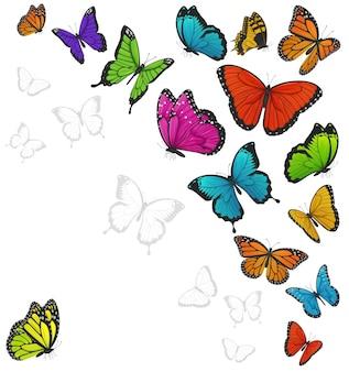Coloridas mariposas aisladas en blanco