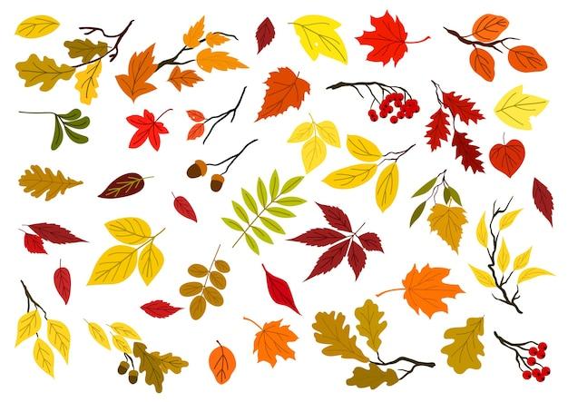 Colorido conjunto de hojas de otoño