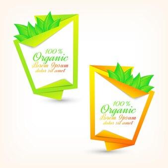 Colorido conjunto de pancartas con hojas verdes frescas. diseño ecológico.