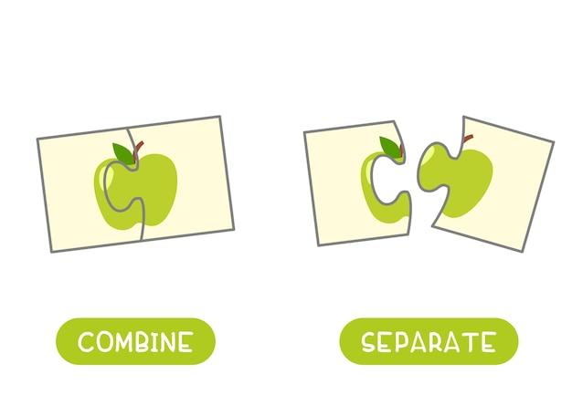 Combinar y separar el concepto de opuestos