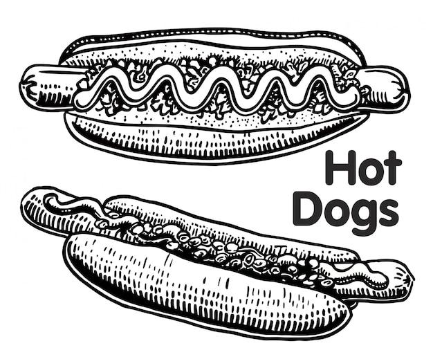 Comida rápida. perro caliente dibujado a mano, con salchichas