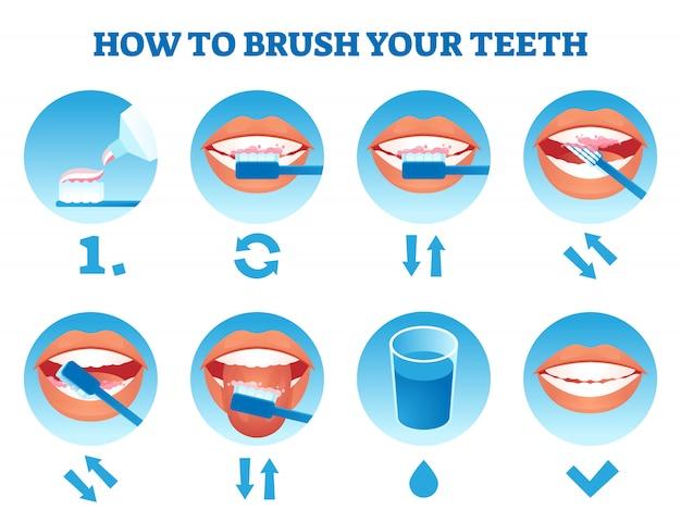 Cómo cepillarse los dientes ilustración. proceso de atención educativa simple