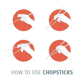 Cómo usar palillos. cocina oriental.