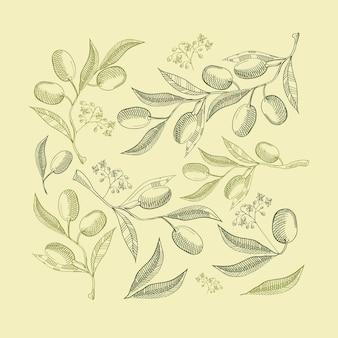 Composición abstracta verde natural