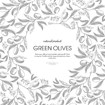 Composición de boceto redondo de aceite de oliva con hermosos brotes e inscripción en el centro