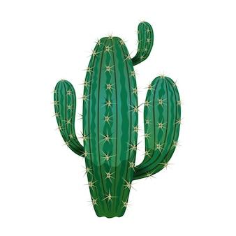 Composición de cactus con imagen aislada de cactus en blanco