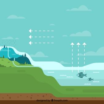 Composición del ciclo del agua con diseño plano