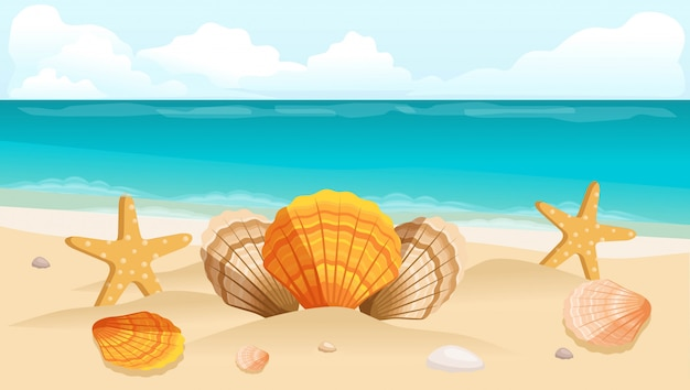 Composición de conchas.