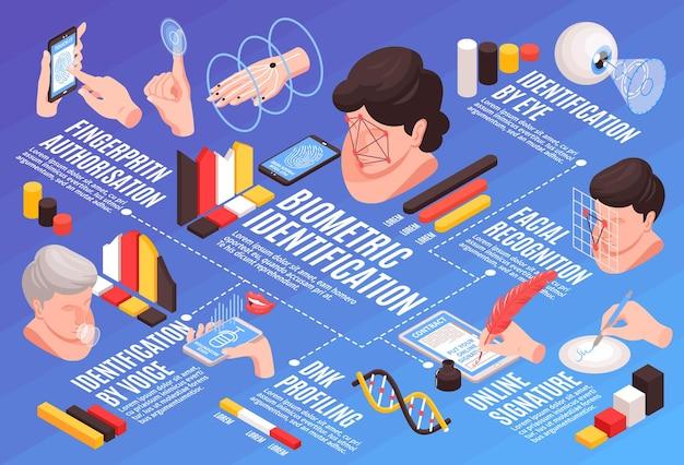 Composición de diagrama de flujo horizontal de identificación biométrica isométrica con imágenes de cabezas humanas manos iconos infográficos y texto