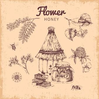 Composición dibujada a mano de miel de flores