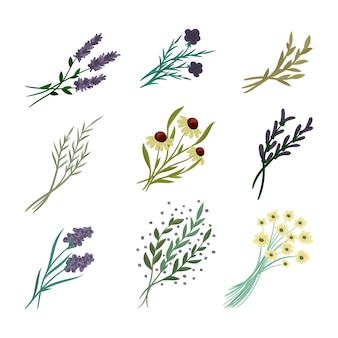 Composición floral conjunto hecho de flores