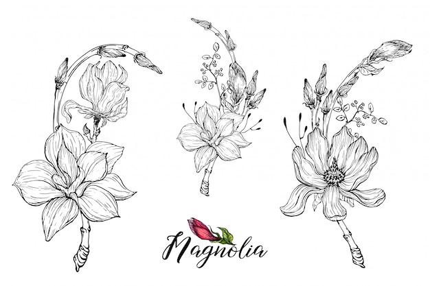 Composición con flores de magnolia