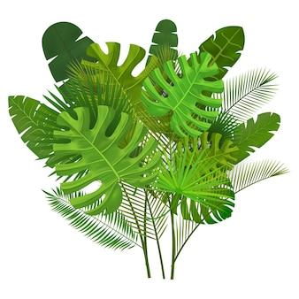 Composición de hojas tropicales aislado en blanco