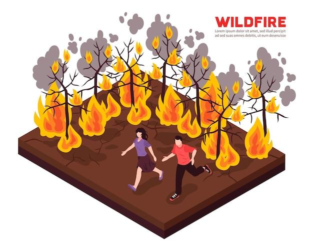 Composición isométrica de incendios forestales con personas huyendo de las llamas de los árboles forestales en llamas
