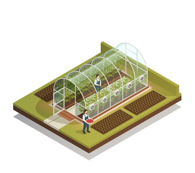 Composición isométrica de invernadero en forma de túnel