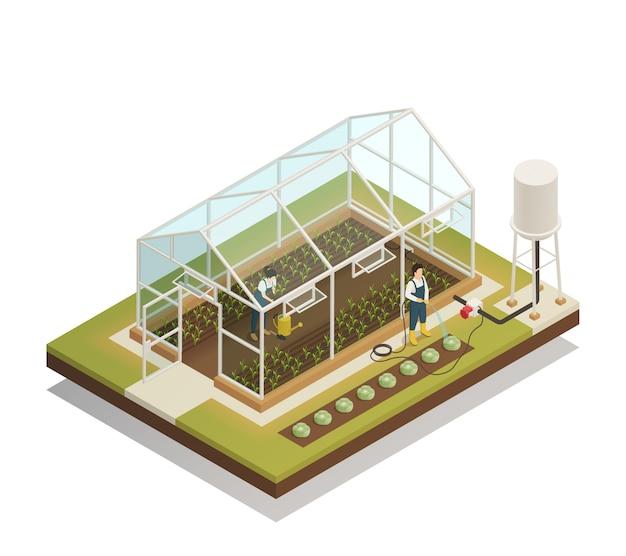 Composición isométrica de riego de instalaciones de invernadero