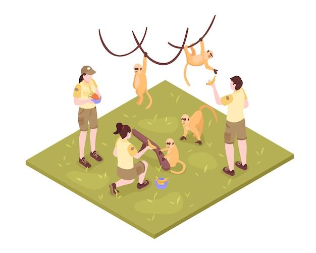 Composición isométrica de los trabajadores del zoológico sobre fondo blanco con monos tropicales y un grupo de personajes del cuidador del zoológico