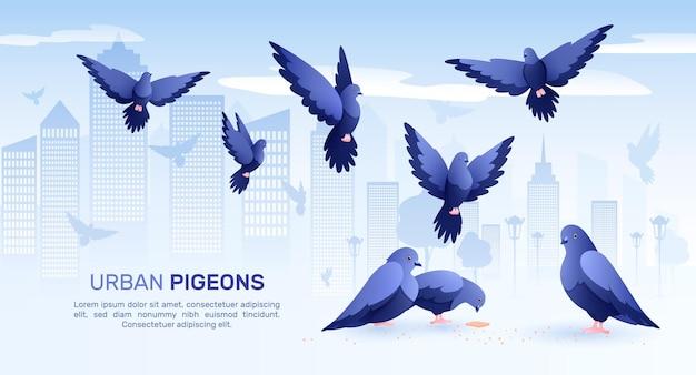 Composición plana de palomas con siluetas de paisaje urbano de pájaros y palomas