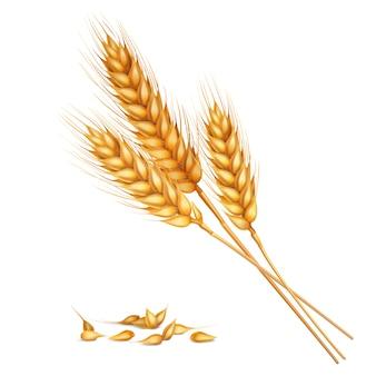 Composición realista de trigo