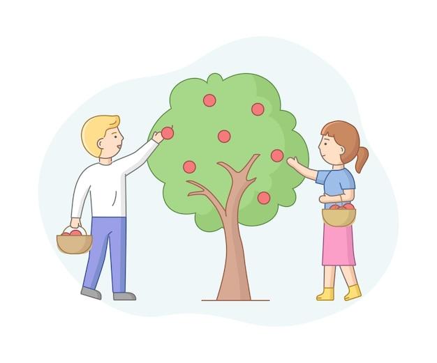 Composición de vectores de dibujos animados con personajes masculinos y femeninos recoger manzanas del árbol. concepto de agricultura estacional. la gente trabaja en el jardín. objetos con contorno.