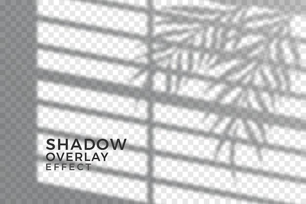 Concepto abstracto de sombras transparentes