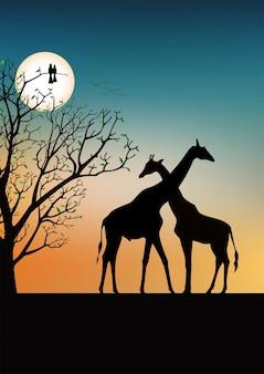 Concepto de árbol de la vida, jirafas en el fondo del amanecer, vista de silueta