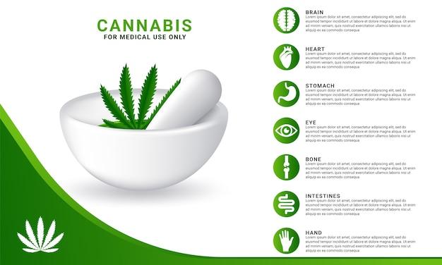 Concepto de cannabis para usos médicos infográfico.