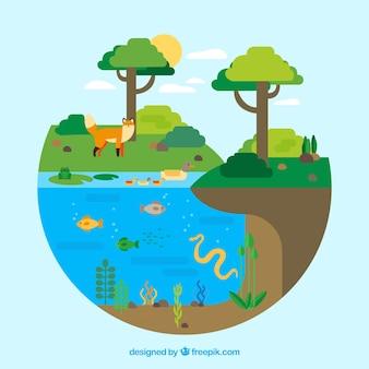 Concepto circular del ecosistema