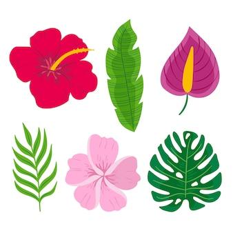 Concepto de colección de hojas y flores tropicales