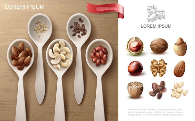 Concepto colorido realista de nueces naturales con cacahuete almendra anacardo y piñones en cucharas