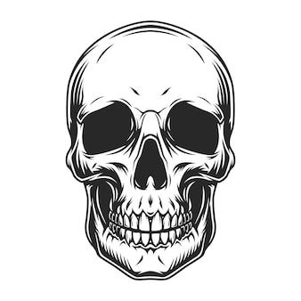 Concepto de cráneo humano vintage